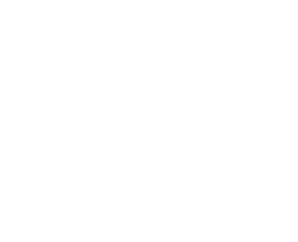 DIS NIETO S.L